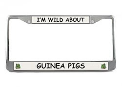 Guinea Pig License Plate Frame