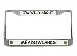 Meadowlark License Plate Frame