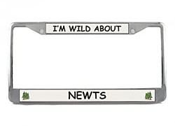 Newt License Plate Frame