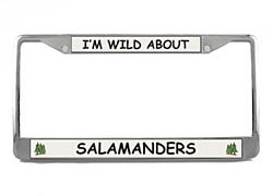 Salamander License Plate Frame