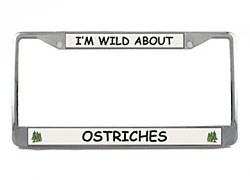 Ostrich License Plate Frame
