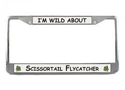 Scissor Tailed Flycatcher License Plate Frame