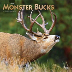 Monster Bucks Calendar 2015