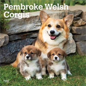 Pembroke Welsh Corgis Calendar 2015