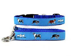 Australian Shepherd Collar & Leash