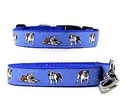 Bulldog Collar & Leash