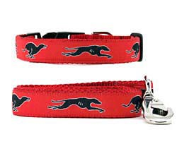 Greyhound Collar & Leash