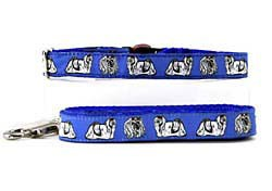 Maltese Collar & Leash