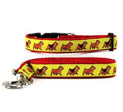 Norfolk Terrier Collar & Leash
