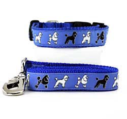 Poodle Collar & Leash - Large