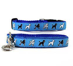Poodle Collar & Leash