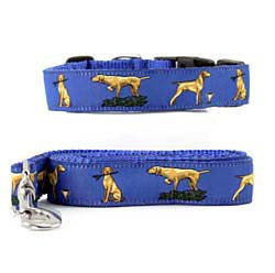 Vizsla Collar & Leash