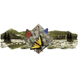 Butterfly T-Shirt - Scenic