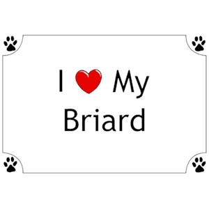 Briard T-Shirt - I love my