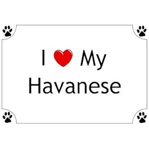 Havanese T-Shirt - I love my