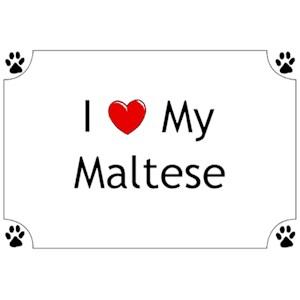 Maltese T-Shirt - I love my