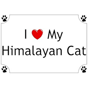 Himalayan Cat T-Shirt - I love my