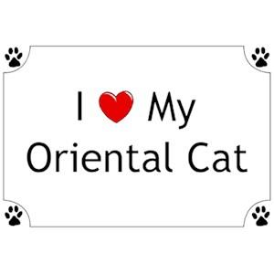 Oriental Cat T-Shirt - I love my