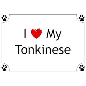 Tonkinese Cat T-Shirt - I love my