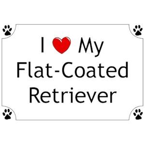 Flat-Coated Retriever T-Shirt - I love my