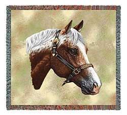 Appaloosa Horse Blanket