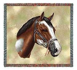 Paint Horse Blanket