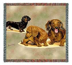 Dachshund Puppies Blanket