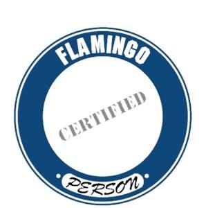 Flamingo T-Shirt - Certified Person