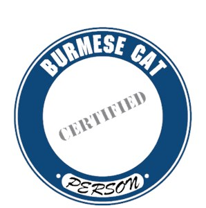 Burmese Cat T-Shirt - Certified Person