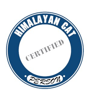 Himalayan Cat T-Shirt - Certified Person