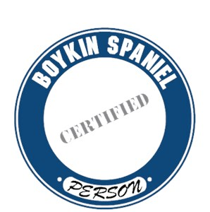 Boykin Spaniel T-Shirt - Certified Person