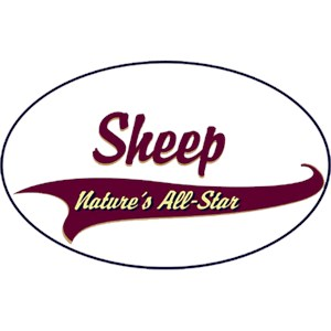 Sheep T-Shirt - Breed of Champions