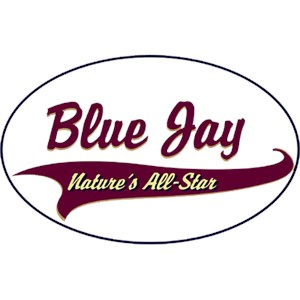 Blue Jay T-Shirt - Breed of Champions