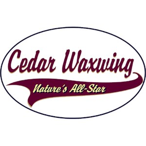 Cedar Waxwing T-Shirt - Breed of Champions