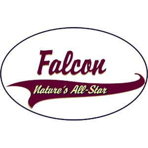 Falcon T-Shirt - Breed of Champions