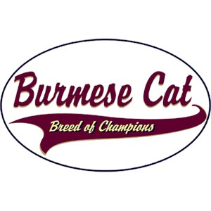 Burmese Cat T-Shirt - Breed of Champions