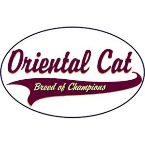 Oriental Cat T-Shirt - Breed of Champions