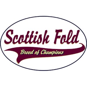 Scottish Fold Cat T-Shirt - Breed of Champions