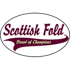 Scottish Fold Cat T-Shirt - Breed of Champions