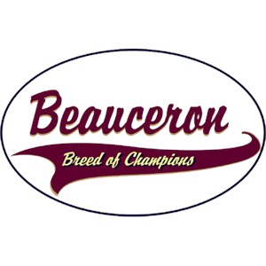 Beauceron T-Shirt - Breed of Champions