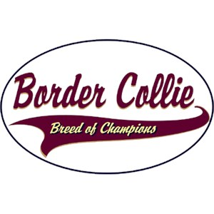 Border Collie T-Shirt - Breed of Champions