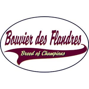 Bouvier des Flandres T-Shirt - Breed of Champions