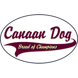 Canaan Dog T-Shirt - Breed of Champions