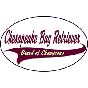 Chesapeake Bay Retriever T-Shirt - Breed of Champions