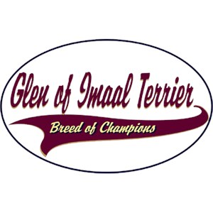 Glen of Imaal Terrier T-Shirt - Breed of Champions