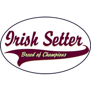 Irish Setter T-Shirt - Breed of Champions