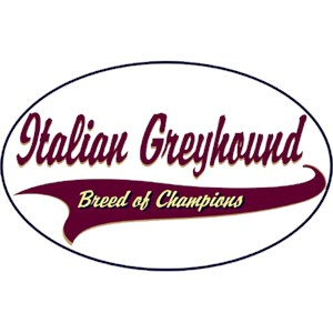 Italian Greyhound T-Shirt - Breed of Champions