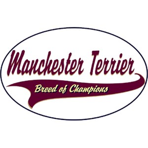 Manchester Terrier T-Shirt - Breed of Champions
