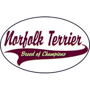Norfolk Terrier T-Shirt - Breed of Champions