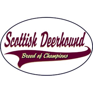 Scottish Deerhound T-Shirt - Breed of Champions